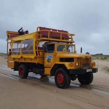 sand-buggy-cabo-polonia.jpg